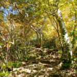 【富山・白木峰】自然風景ギャラリー「春夏秋冬」