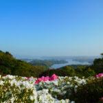 【長崎・長串山】自然風景ギャラリー「春夏秋冬」