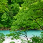 【富山・黒部峡谷】自然風景ギャラリー「春夏秋冬」