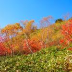 【焼岳】自然風景ギャラリー「春夏秋冬」